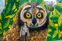 Wilma posing by a painting of a short eared owl.