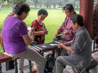 Game of cards, this park is full of social activities.